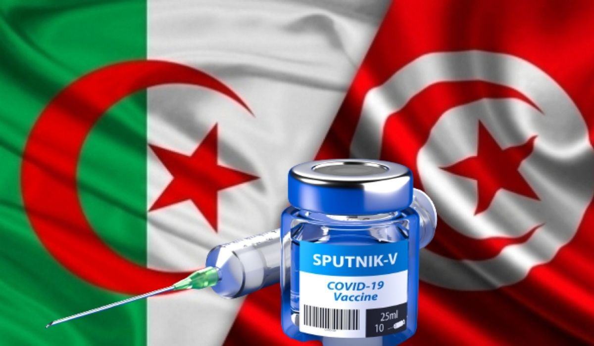 «L'Algérie a été toujours présente pour nous», reconnaissent les internautes tunisiens - Algérie