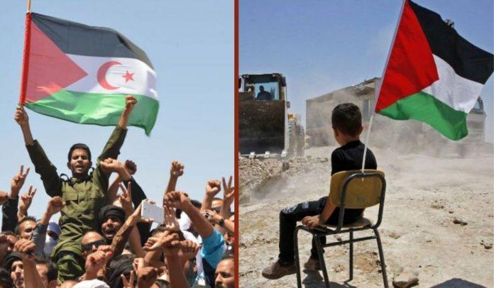 L'Algérie est restée fidèle aux causes justes de libération - Algérie