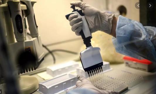 Acquisition «prochaine» d'équipements de pointe pour le séquençage du Coronavirus - Algérie