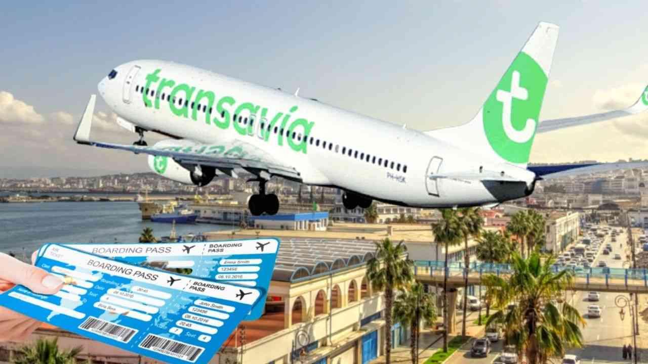Reprise des vols de Transavia en Algérie, vente de ses billets : la compagnie précise - Algérie