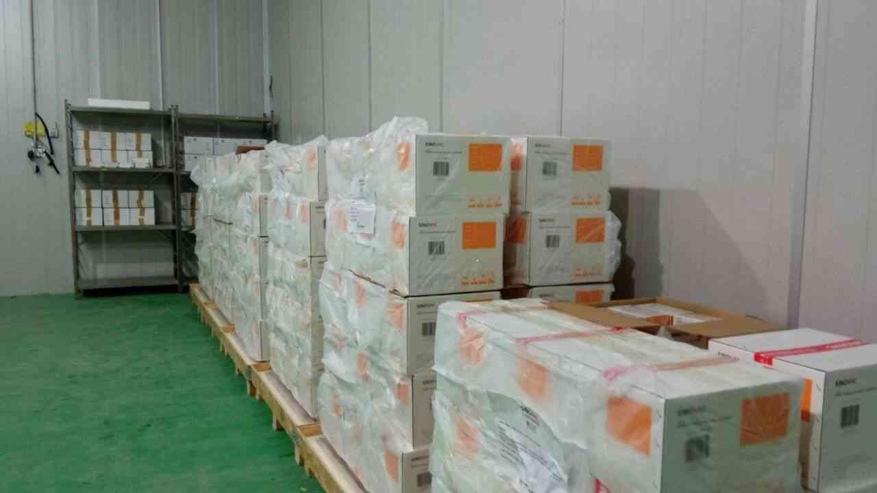 Coronavirus en Algérie : réception d'un lot du vaccin chinois Sinovac - Algérie