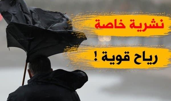 نشرية خاصة تنبه من هبوب رياح قوية تتعدى 80كلم/سا في 14 ولاية - الجزائر