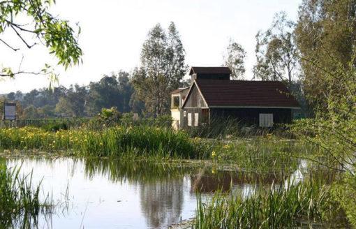 بحيرة طونغا..ستسحرك بمناظرها الخلابة و نباتاتها النادرة