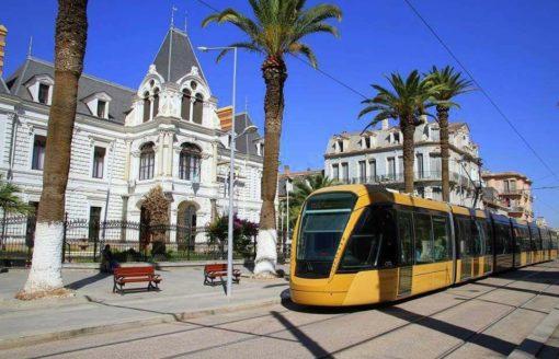 من بين أجمل المدن الجزائرية..جولة في سيدي بلعباس بـ25 صورة
