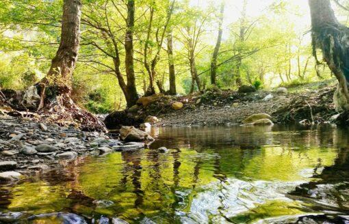 """الحديقة الوطنية """"تازة"""" …مناظر طبيعية نادرة الجمال ستسحرك"""