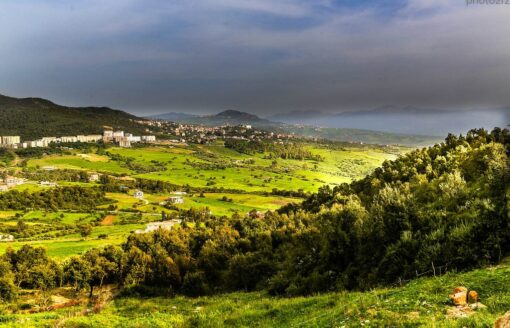 غابة اعكوران .. ملاذ لعشاق الطبيعة والباحثين عن الراحة والهدوء