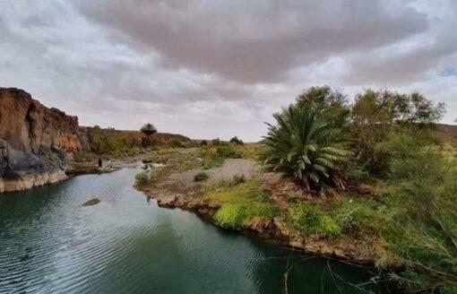 جولة في واحدة من أجمل المناطق الرطبة في تمنراست …سحر الصحراء الجزائرية